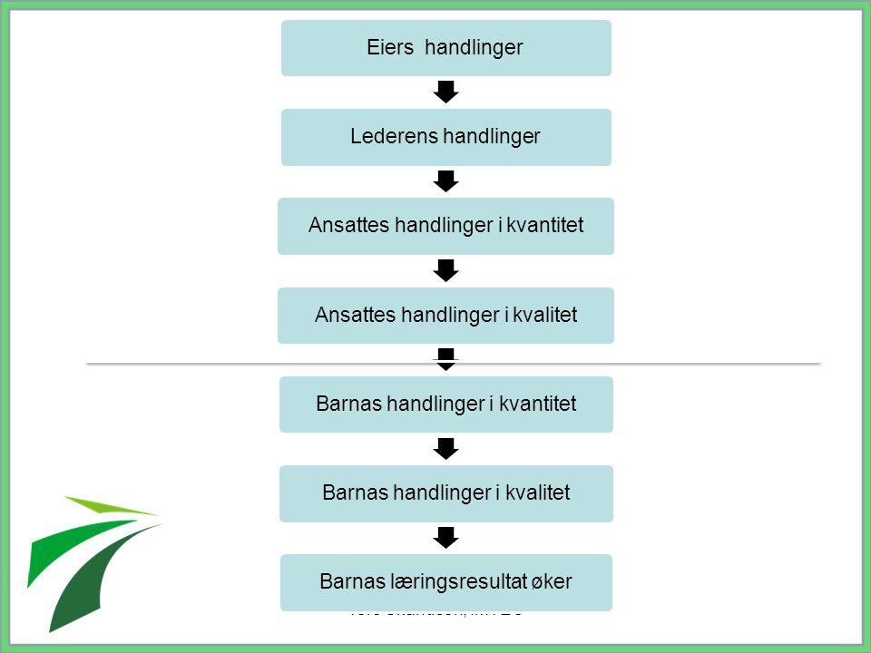 Tore Skandsen, IMTEC Eiers handlinger Lederens handlinger