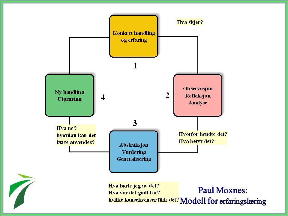 Modell for erfaringslæring