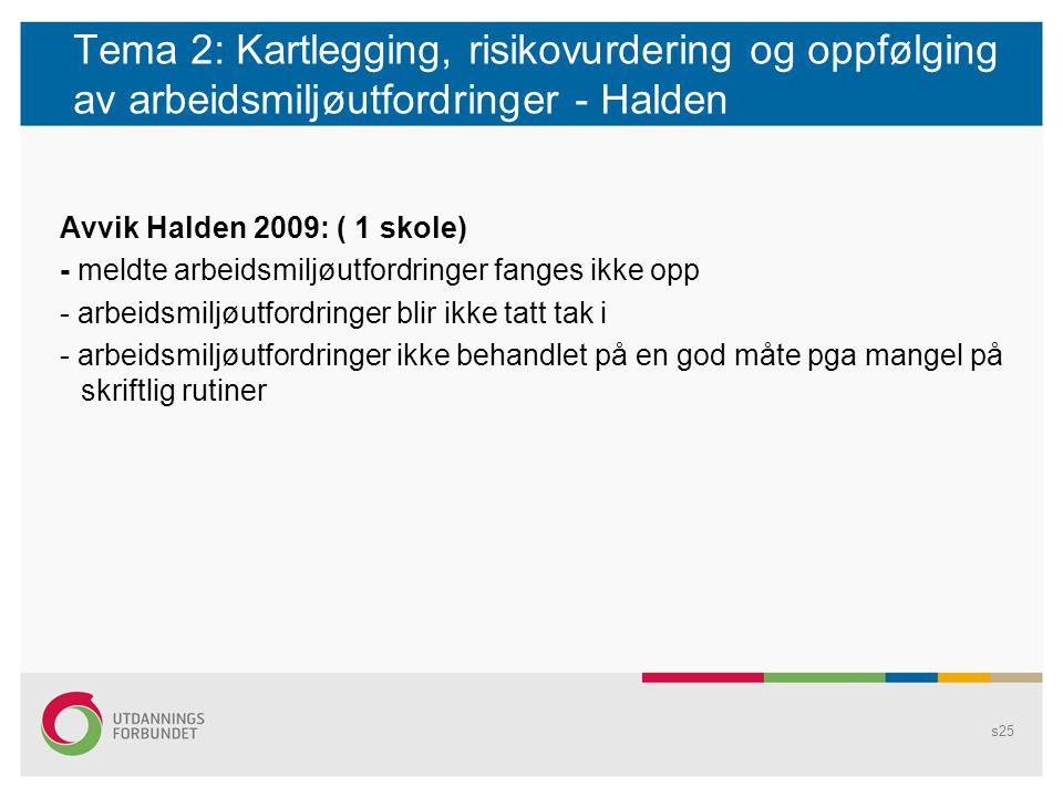 Tema 2: Kartlegging, risikovurdering og oppfølging av arbeidsmiljøutfordringer - Halden