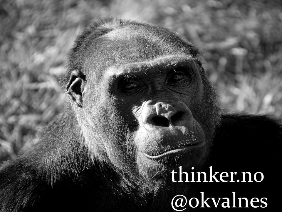 thinker.no @okvalnes