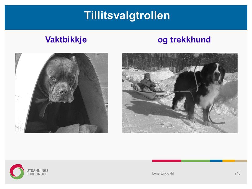 Tillitsvalgtrollen Vaktbikkje og trekkhund