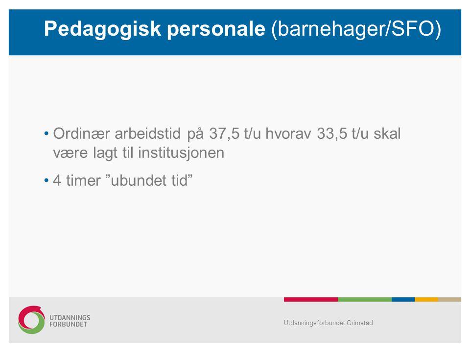 Pedagogisk personale (barnehager/SFO)