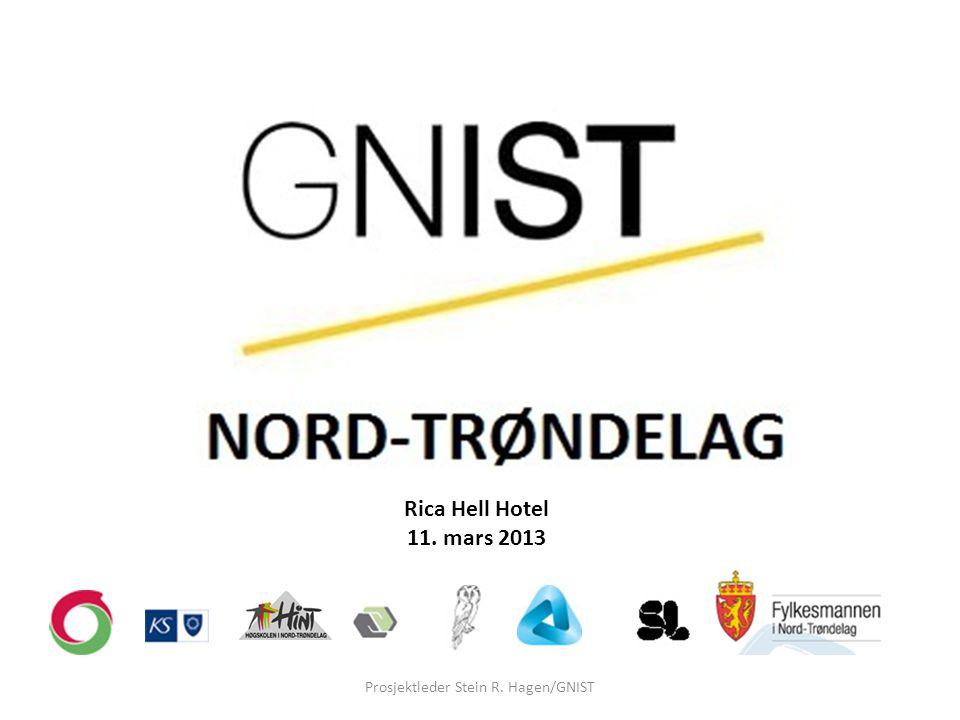 Prosjektleder Stein R. Hagen/GNIST