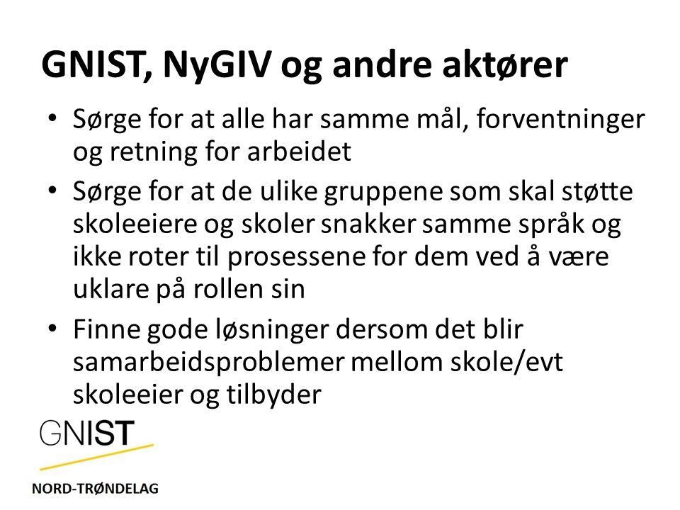 GNIST, NyGIV og andre aktører