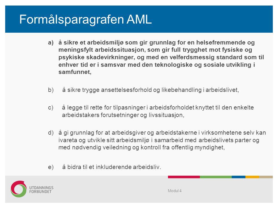 Formålsparagrafen AML