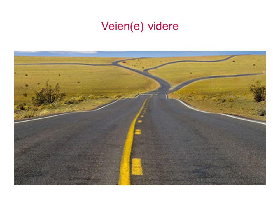 Veien(e) videre