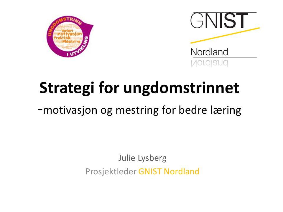 Strategi for ungdomstrinnet -motivasjon og mestring for bedre læring
