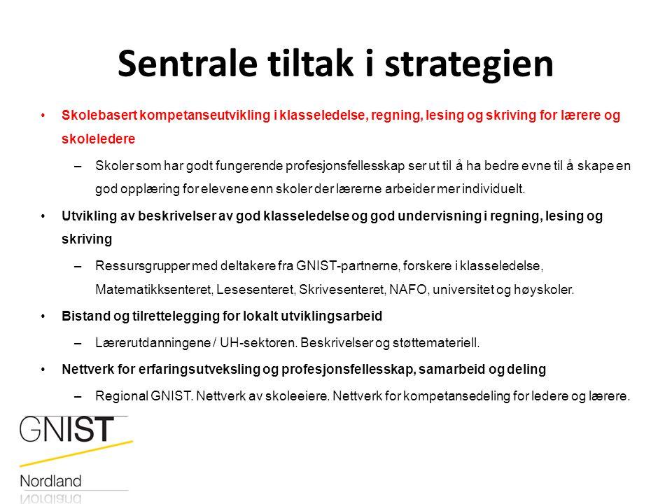 Sentrale tiltak i strategien