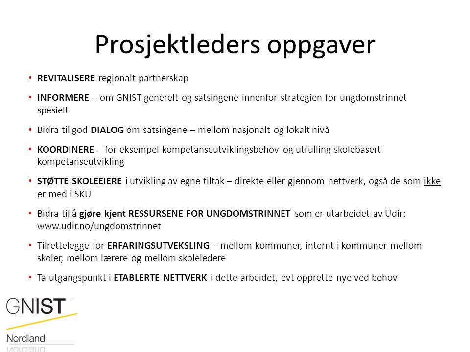 Prosjektleders oppgaver