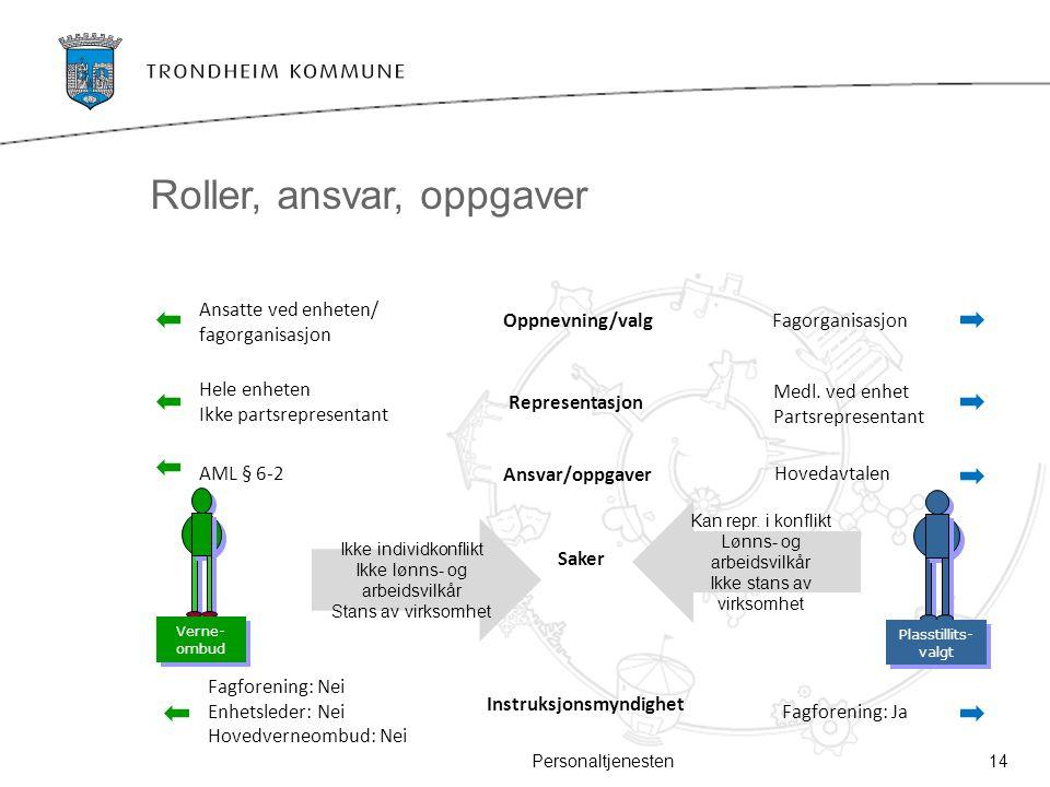 Roller, ansvar, oppgaver