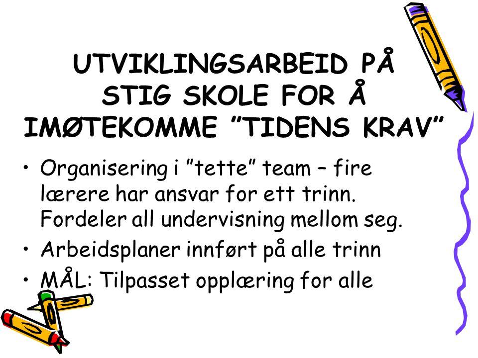 UTVIKLINGSARBEID PÅ STIG SKOLE FOR Å IMØTEKOMME TIDENS KRAV