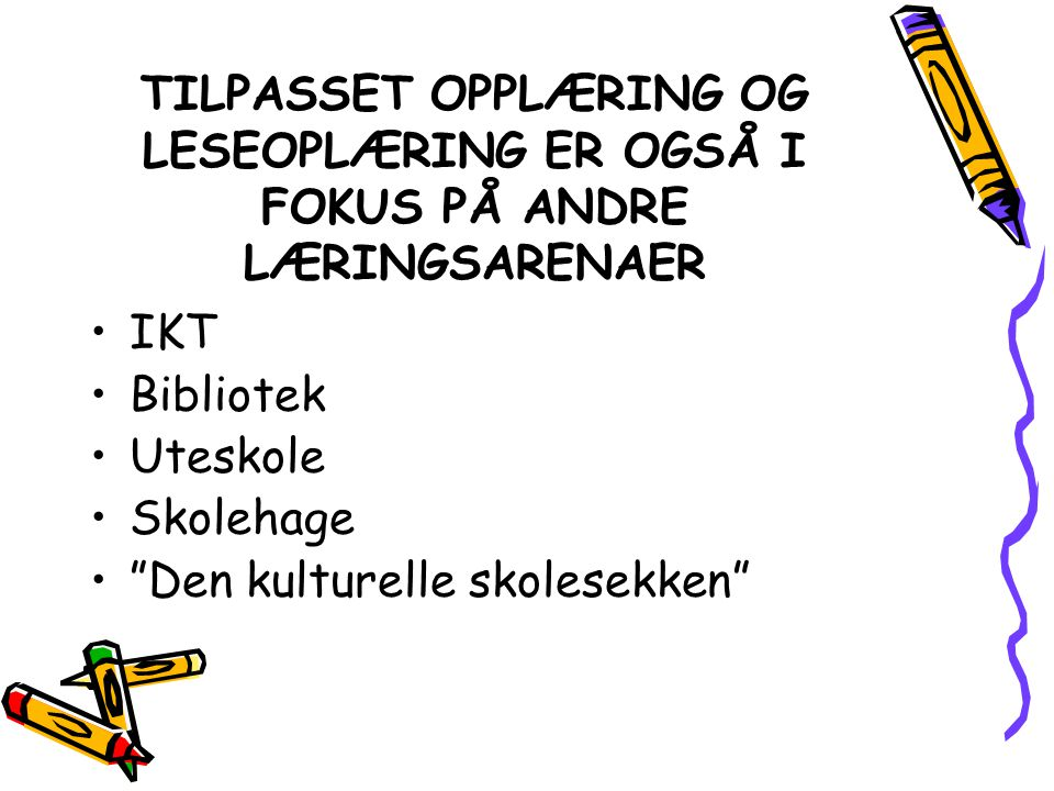TILPASSET OPPLÆRING OG LESEOPLÆRING ER OGSÅ I FOKUS PÅ ANDRE LÆRINGSARENAER