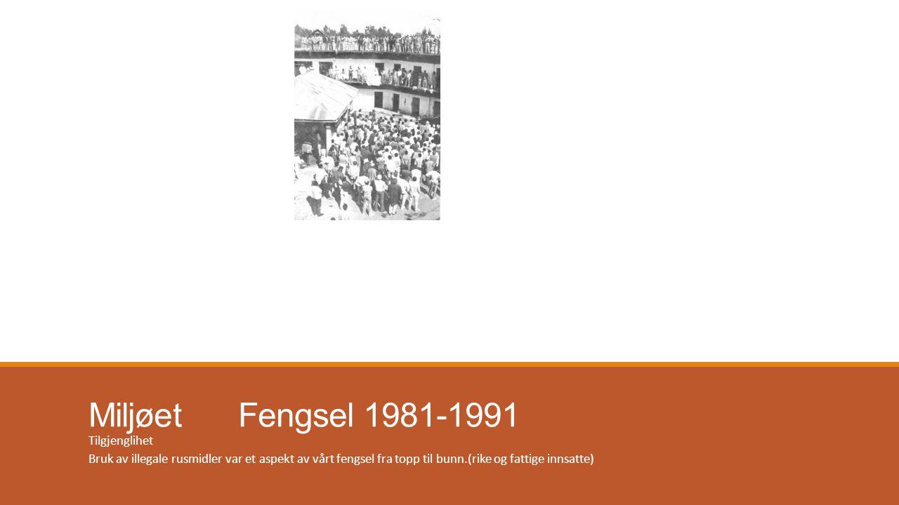 Miljøet Fengsel 1981-1991 Tilgjenglihet