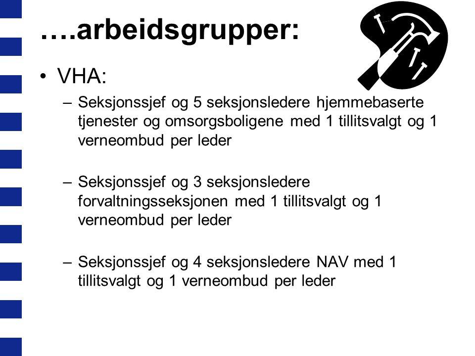 ….arbeidsgrupper: VHA: