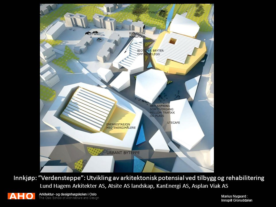 Innkjøp: Verdensteppe : Utvikling av arkitektonisk potensial ved tilbygg og rehabilitering