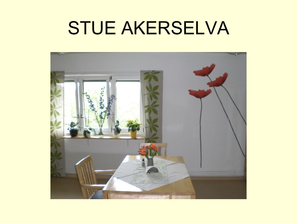 STUE AKERSELVA