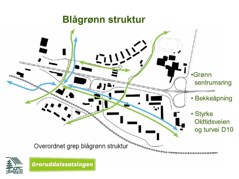 Blågrønn struktur Grønn sentrumsring Bekkeåpning Styrke Oldtidsveien