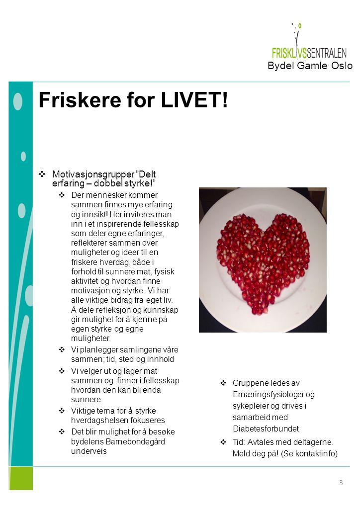 Friskere for LIVET! Bydel Gamle Oslo