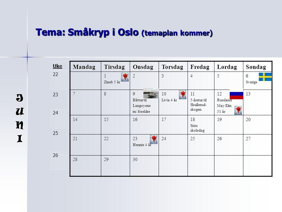Tema: Småkryp i Oslo (temaplan kommer)