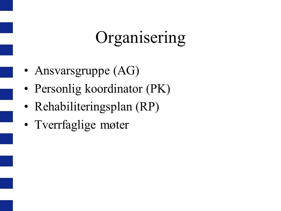 Organisering Ansvarsgruppe (AG) Personlig koordinator (PK)