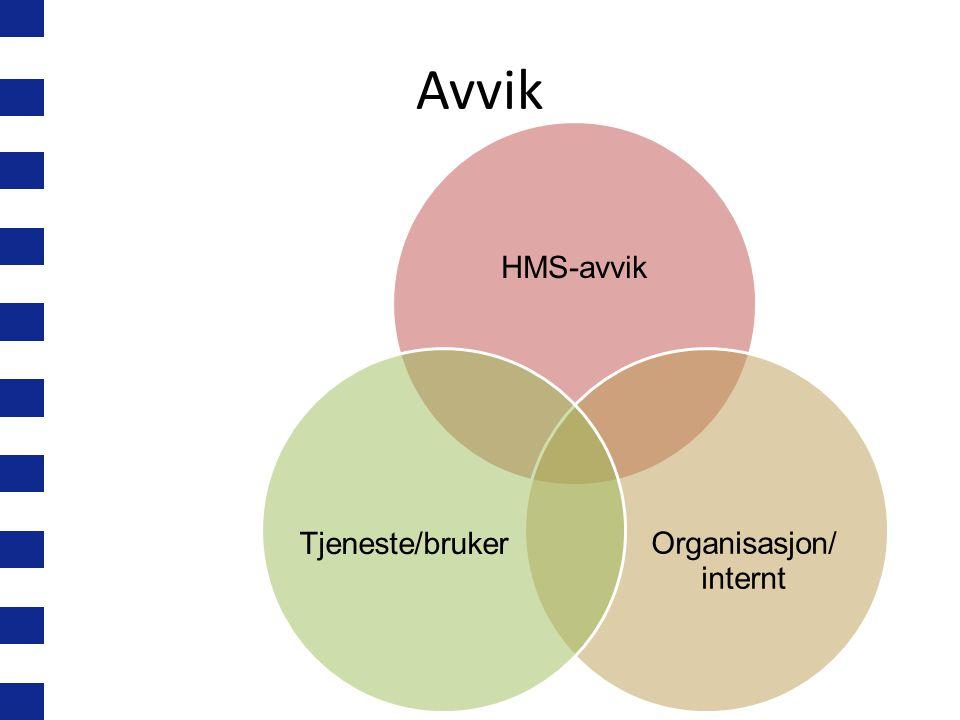 Organisasjon/ internt
