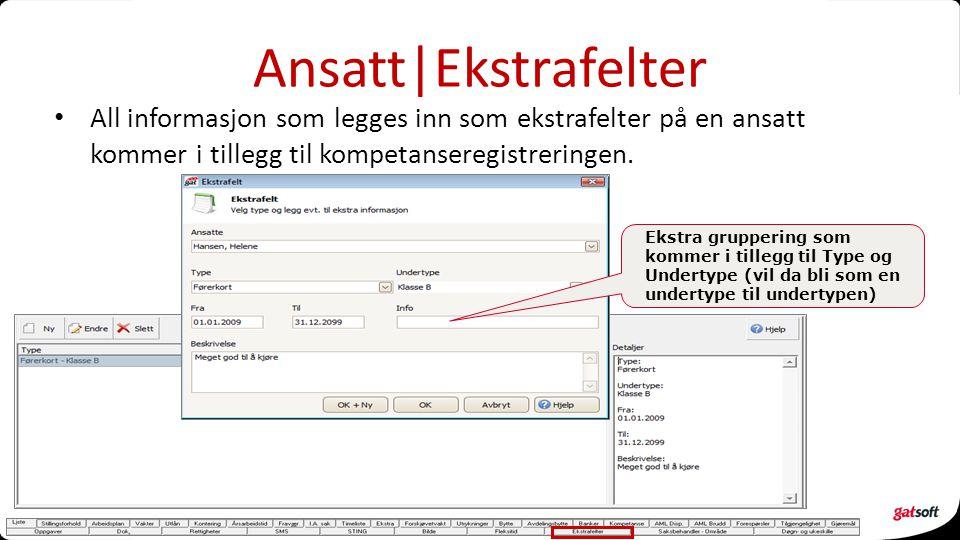 Ansatt|Ekstrafelter All informasjon som legges inn som ekstrafelter på en ansatt kommer i tillegg til kompetanseregistreringen.