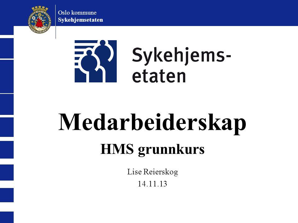 Medarbeiderskap HMS grunnkurs Lise Reierskog 14.11.13