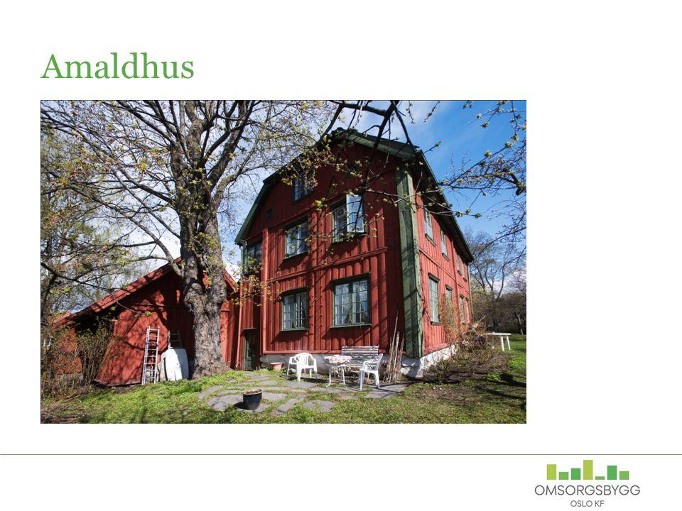 Amaldhus