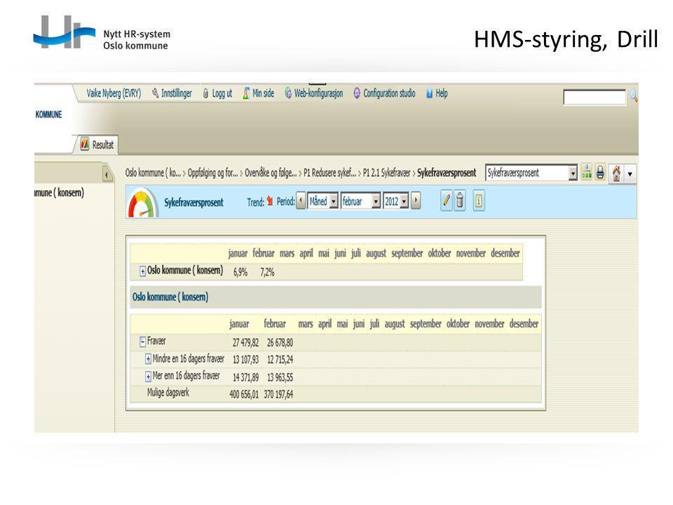 HMS-styring, Drill