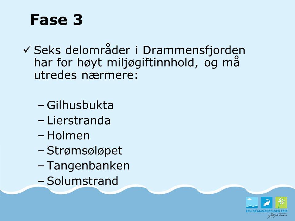 Fase 3 Seks delområder i Drammensfjorden har for høyt miljøgiftinnhold, og må utredes nærmere: Gilhusbukta.