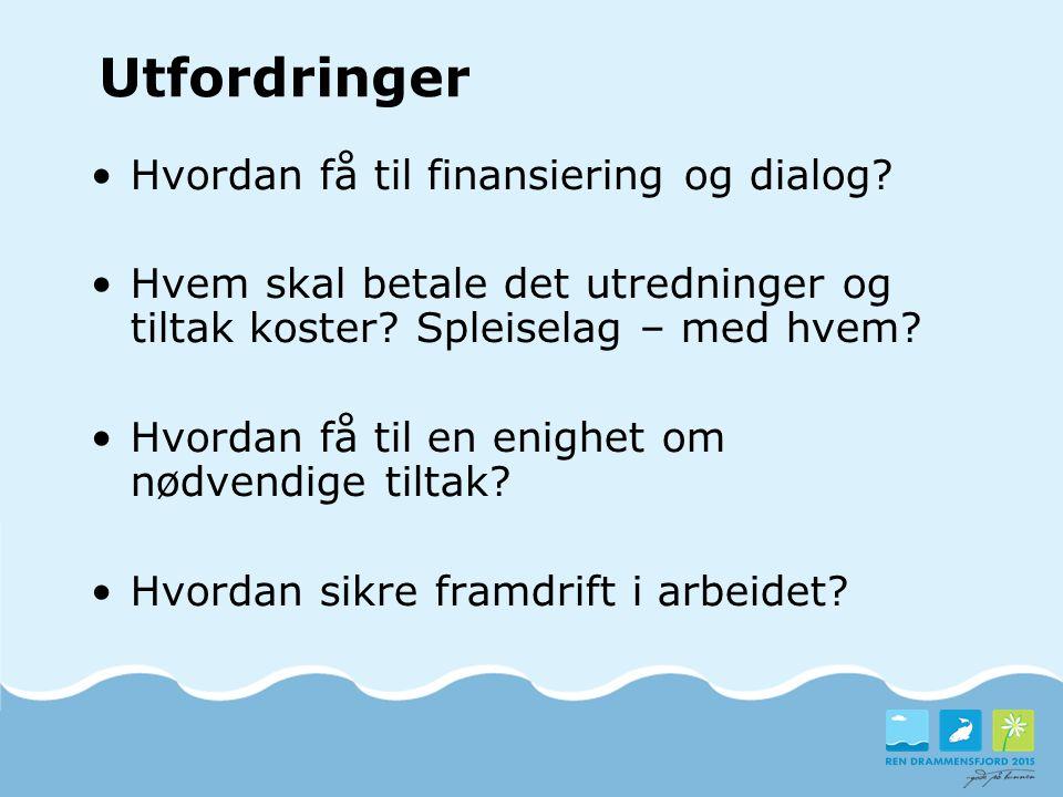 Utfordringer Hvordan få til finansiering og dialog