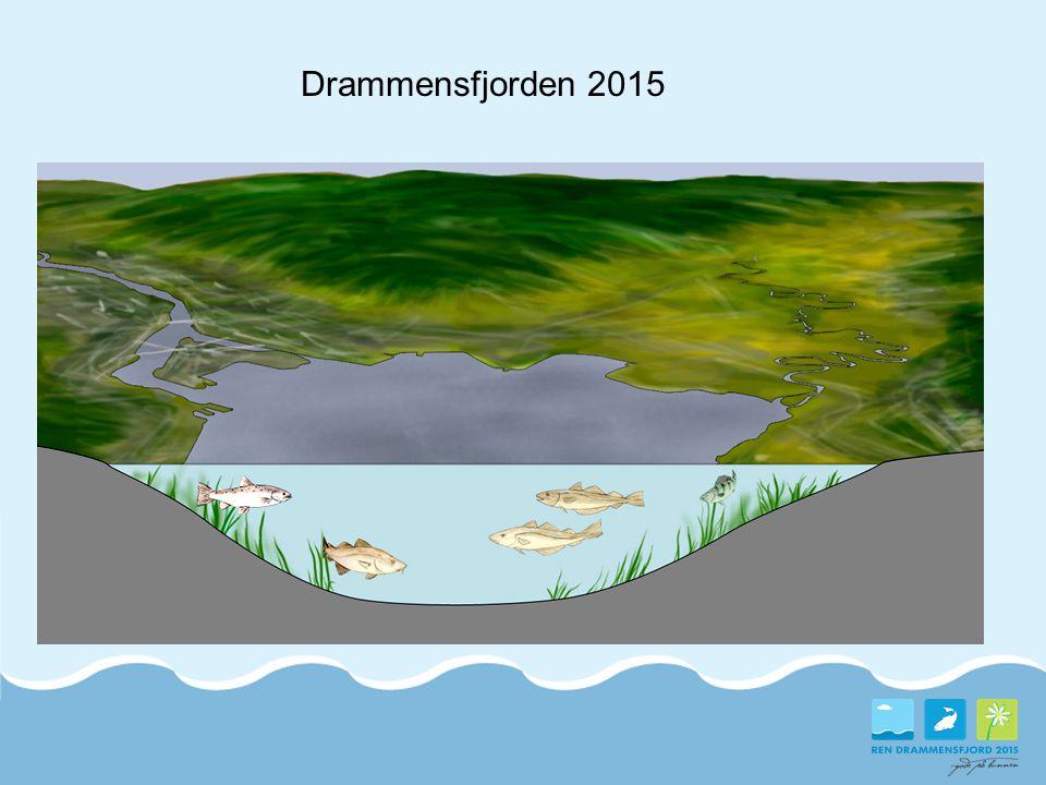 Drammensfjorden 2015 Slik vil vi ha miljøtilstanden i fjorden vår!