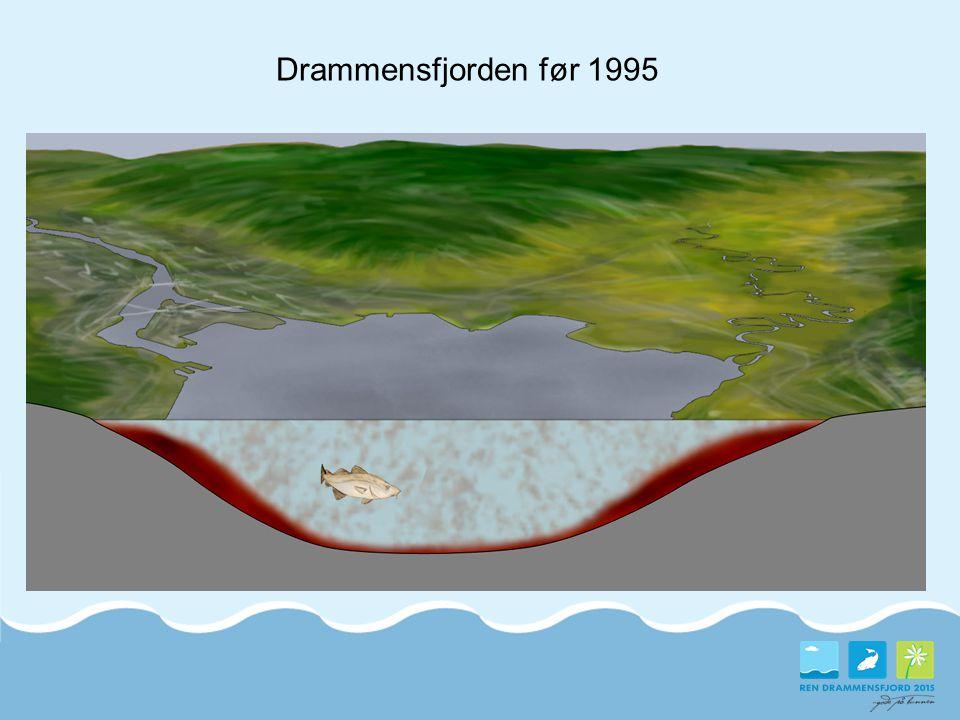 Drammensfjorden før 1995 Tidligere miljøtilstand