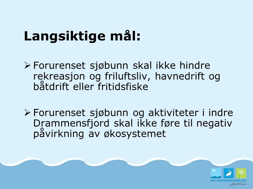Langsiktige mål: Forurenset sjøbunn skal ikke hindre rekreasjon og friluftsliv, havnedrift og båtdrift eller fritidsfiske.