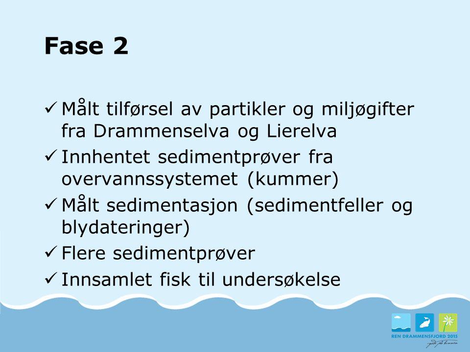 Fase 2 Målt tilførsel av partikler og miljøgifter fra Drammenselva og Lierelva. Innhentet sedimentprøver fra overvannssystemet (kummer)