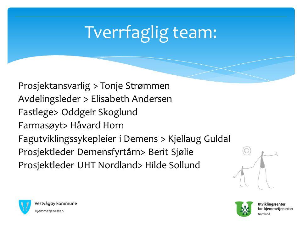 Tverrfaglig team: