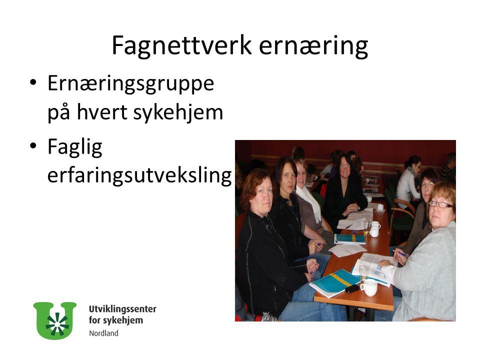 Fagnettverk ernæring Ernæringsgruppe på hvert sykehjem
