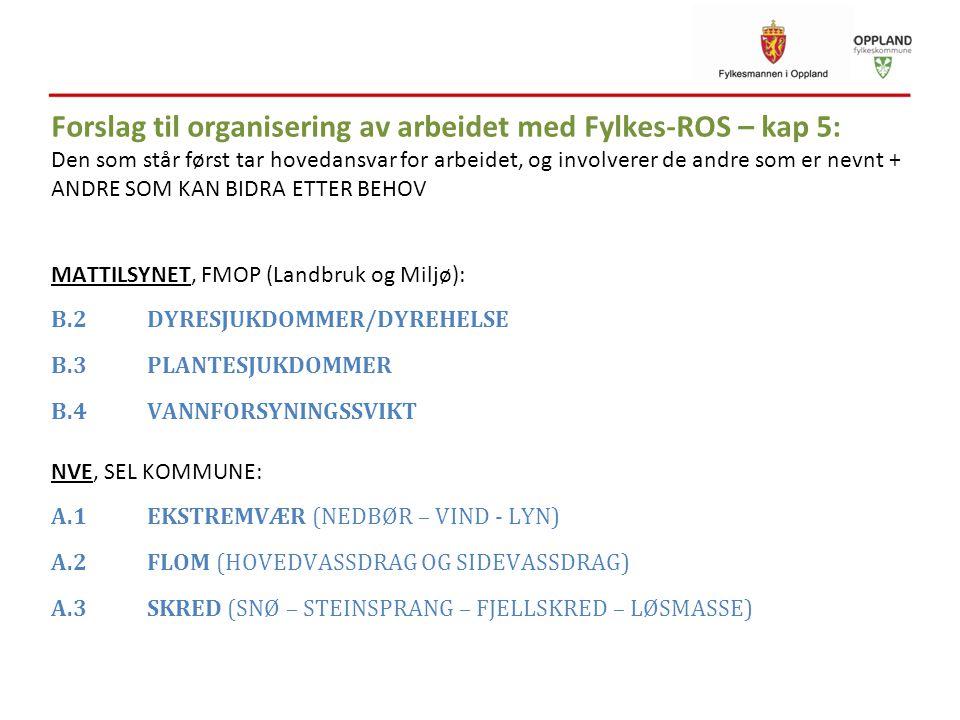Forslag til organisering av arbeidet med Fylkes-ROS – kap 5: