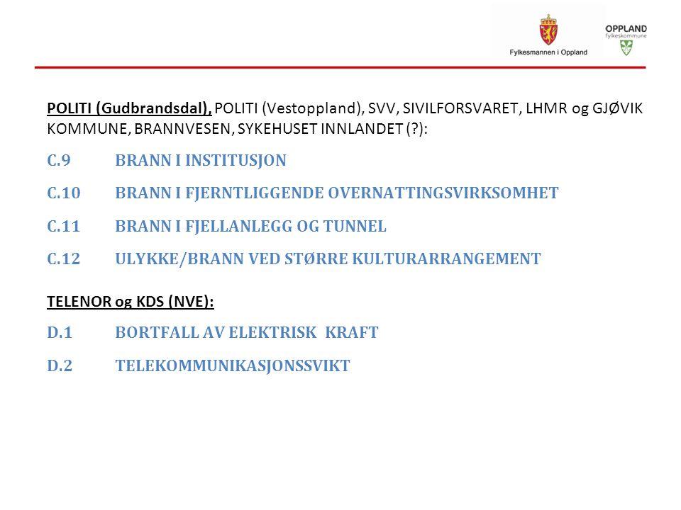 POLITI (Gudbrandsdal), POLITI (Vestoppland), SVV, SIVILFORSVARET, LHMR og GJØVIK KOMMUNE, BRANNVESEN, SYKEHUSET INNLANDET ( ):