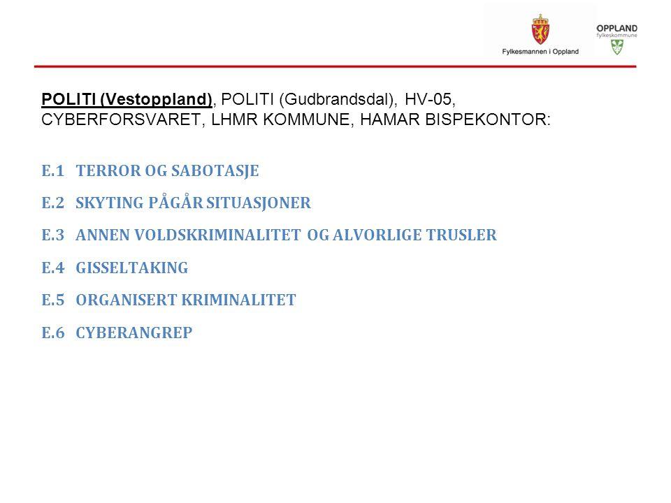 POLITI (Vestoppland), POLITI (Gudbrandsdal), HV-05, CYBERFORSVARET, LHMR KOMMUNE, HAMAR BISPEKONTOR: