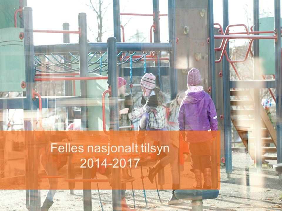 Felles nasjonalt tilsyn 2014-2017