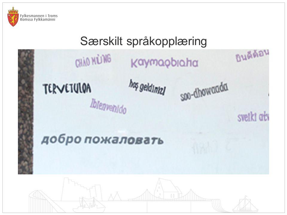Særskilt språkopplæring