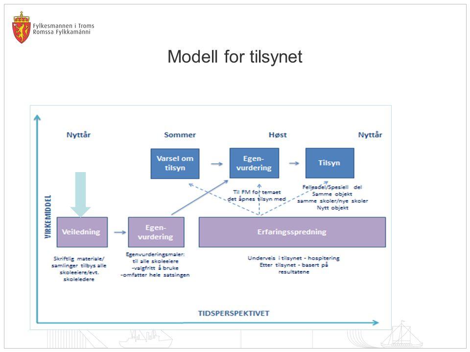 Modell for tilsynet
