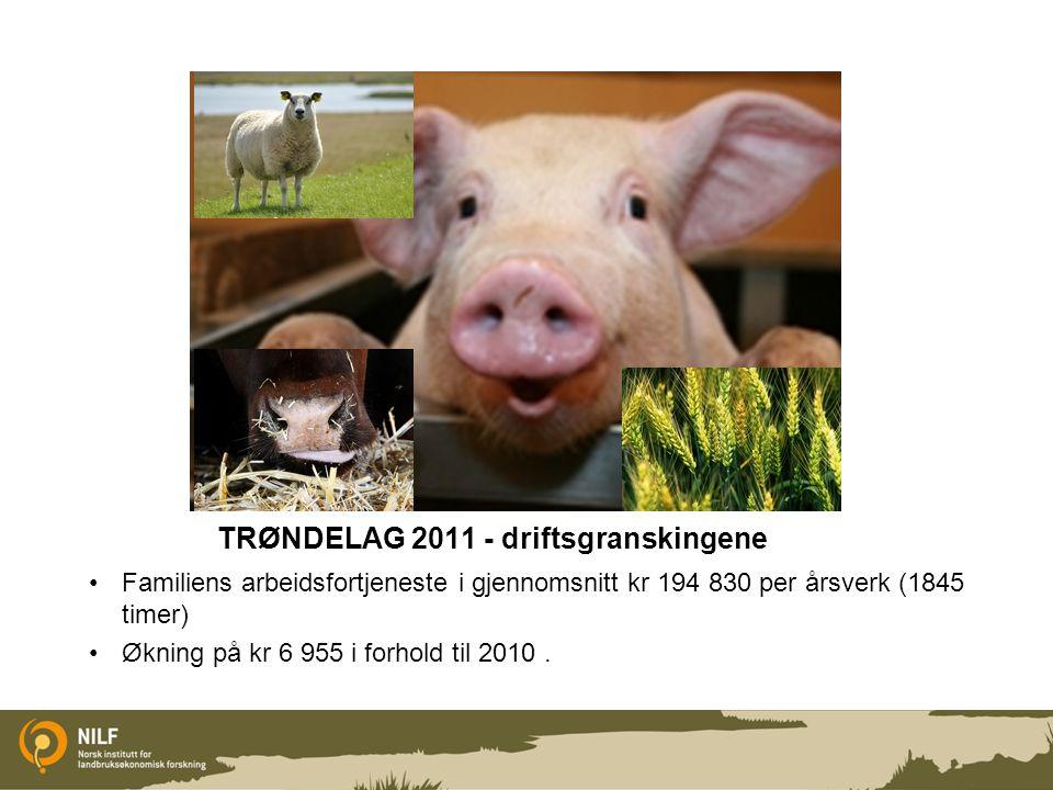 TRØNDELAG 2011 - driftsgranskingene