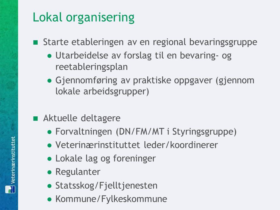Lokal organisering Starte etableringen av en regional bevaringsgruppe