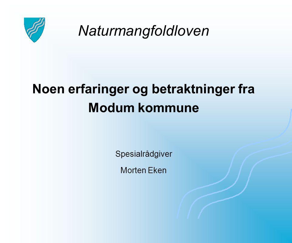 Noen erfaringer og betraktninger fra Modum kommune