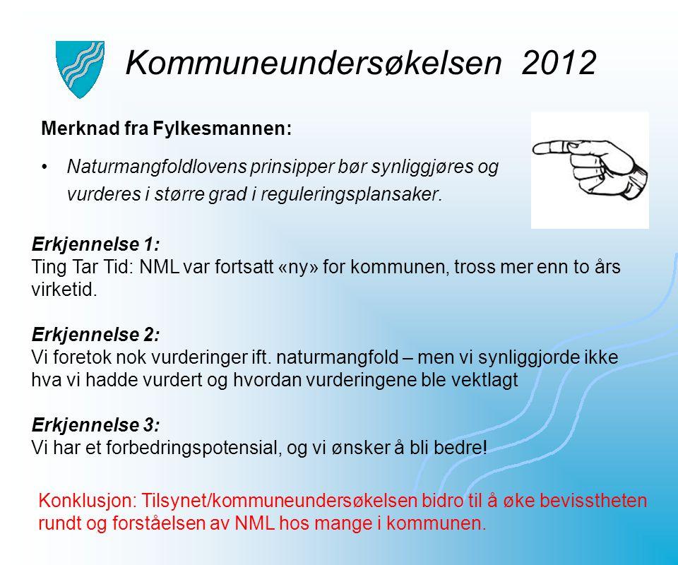 Kommuneundersøkelsen 2012