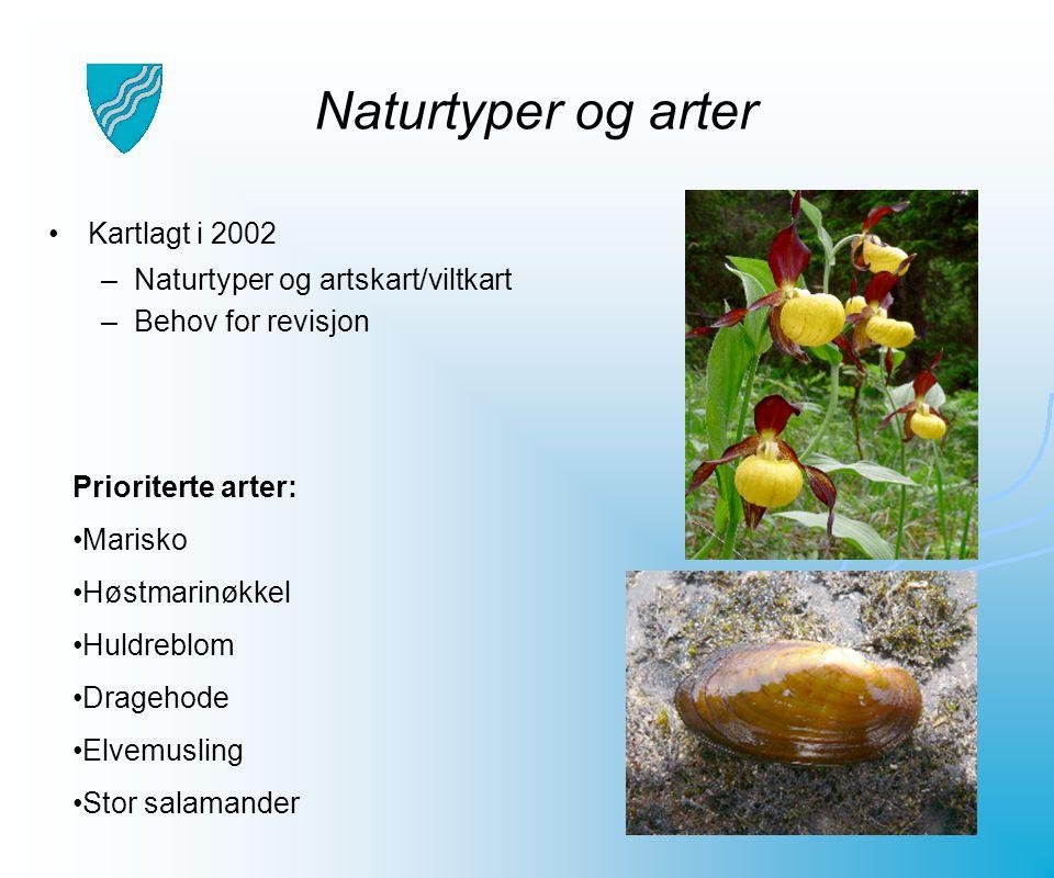 Naturtyper og arter Kartlagt i 2002 Naturtyper og artskart/viltkart