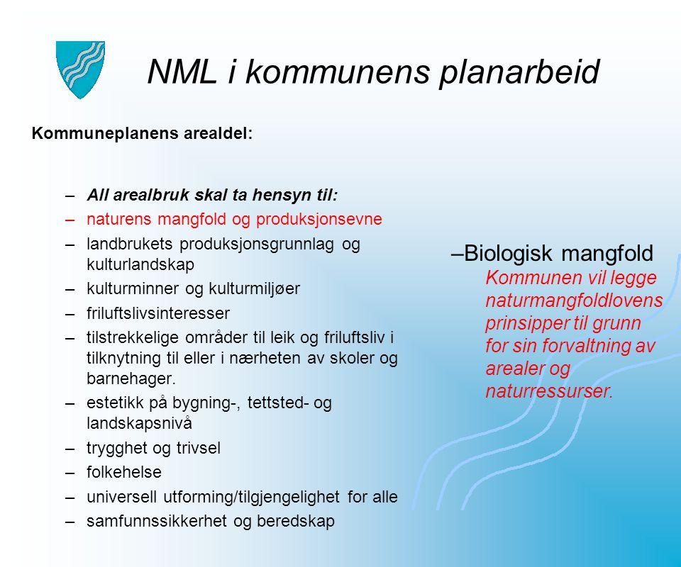 NML i kommunens planarbeid