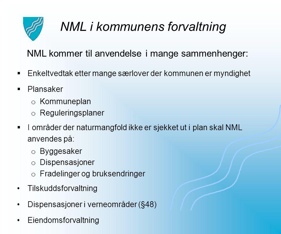 NML i kommunens forvaltning